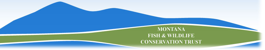 Montana Fish & Wildlife Conservation Trust